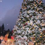 フィンランドや日本のホワイトクリスマス!イベントの開催日時は?